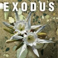 Exodus-thumbnail